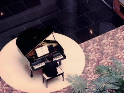 Hyatt Regency Hotel (4)